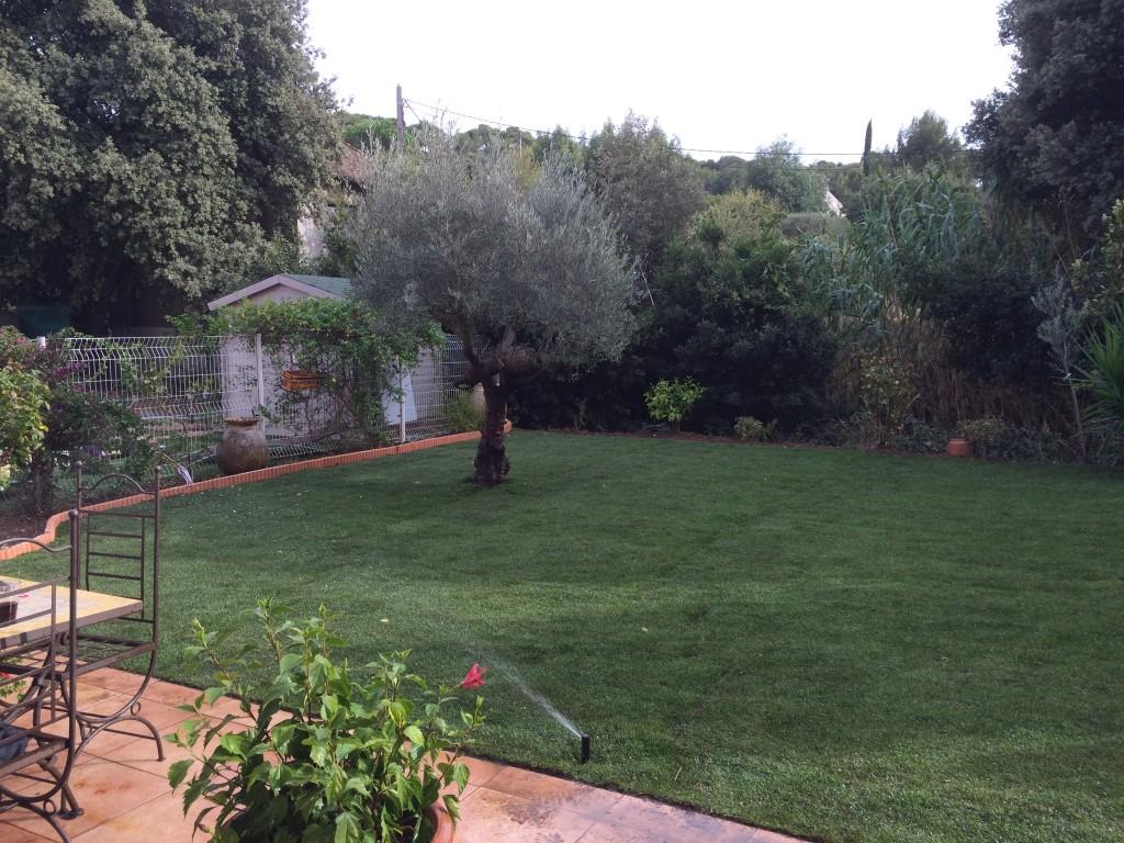 pose gazon en plaques six-fours sanary bandol belmon paysagiste jardinier var 83